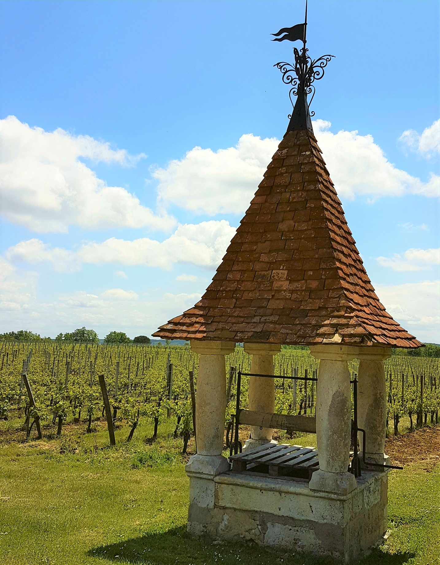 Chateau Jaubertie - go for a tasting, stay for the views!