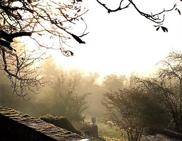 Autumn garden mist